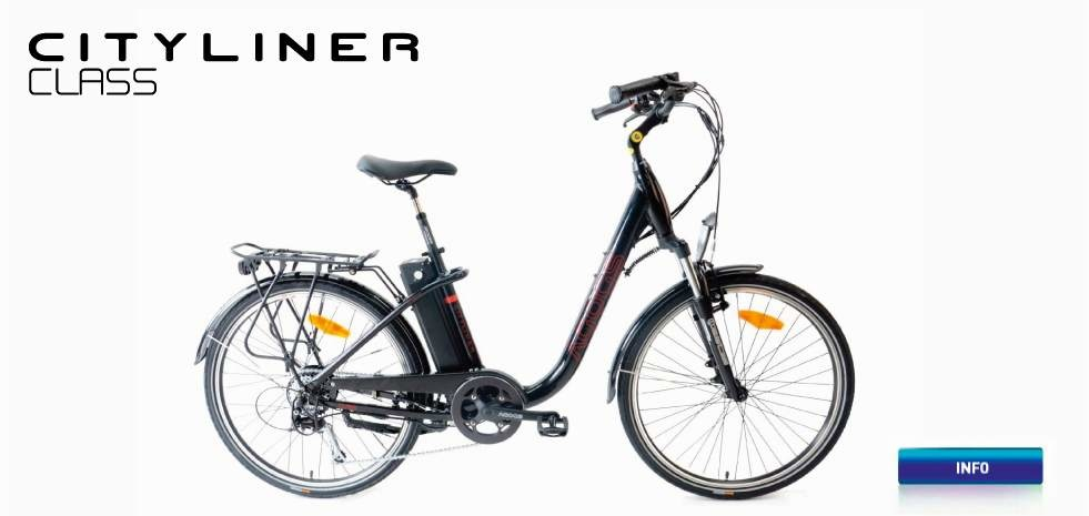 Electric bicycle AGOGS CityLiner Class